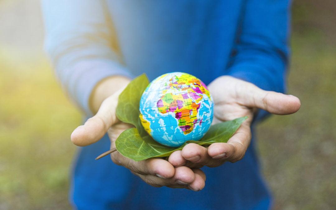 3 kolory ekologii, czyli jak skutecznie komunikować kwestie ekologiczne?